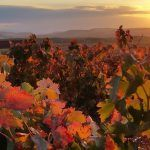 3 paisajes para vivir el otoño