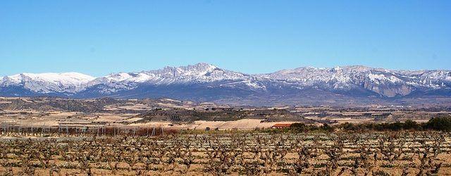 Rutas del vino por España (II)